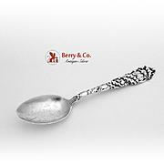 Faribault Minnesota Mistletoe Souvenir Spoon Sterling Silver Alvin 1900