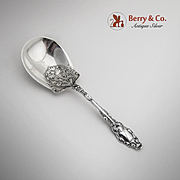 Virginiana Berry Casserole Spoon Sterling Silver Gorham 1904