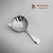 Shell Cognac Brandy Spoon Sterling Silver Gorham 1910