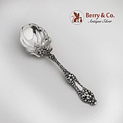 Old Orange Blossom Preserve Spoon Sterling Silver Alvin 1905