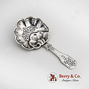 Ornate Tea Caddy Spoon Dutch Silver 1900