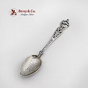 Newport Tenn  Souvenir Spoon Sterling Silver Floral Series Watson 1900