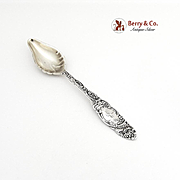 Princess Citrus Spoon Towle Sterling Silver 1892