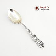 Vintage Delaware Dover Souvenir Spoon Sterling Silver 1900