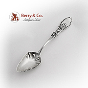 Tyrolean Citrus Spoon Serrated Edge Frank Whiting Sterling Silver 1895
