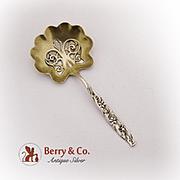 Floral Scroll Bon Bon Spoon Pierced Gilt Bowl Whiting Sterling Silver 1885