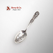 Flora Souvenir Teaspoon Washington Shiebler Sterling Silver 1890