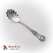 Charles II Sugar Shell Spoon Dominick And Haff Sterling Silver 1894