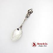 Calla Lily Teaspoon Watson Sterling Silver 1900