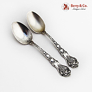 Grape Fruit Floral Souvenir Spoons Pair Paye Baker Sterling Silver 1900 Mono