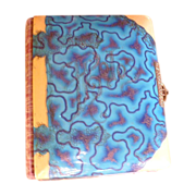 Victorian Celluloid Photo Album, 1800's & Velvet