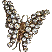 Victorian Paste Butterfly Pin / Brooch