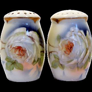 Antique Royal Rudolstadt Porcelain Circa 1900 Salt and Pepper Painted White Roses.