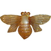 Art Nouveau Carved Horn Insect Brooch
