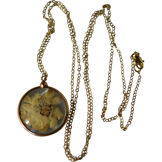 Large Convex Glass Edeleiss Momento Pendant & Chain Necklace