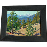 """Deborah McAllister.Impressionist oil,""""View from the foothills"""""""