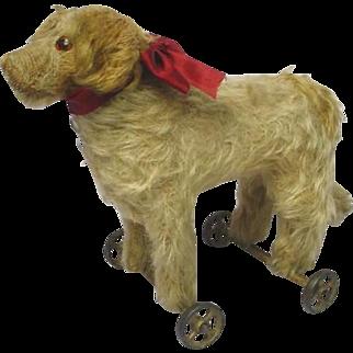 STEIFF - Saint Bernard Pull Toy Dog - c1905-1927