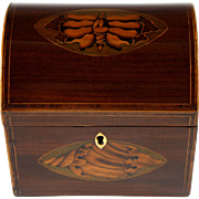 Fine Circa 1800 English Mahogany Dome Top Tea Caddy with Rare Moth Inlay