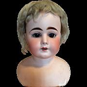 German Bisque Shoulder Head