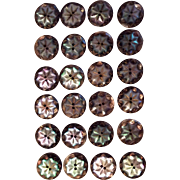Victorian Mother of Pearl Buttons for Antique doll clothing