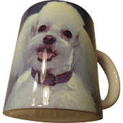 Poodle Mug  Photo Walter Chandoha 1993 XPRES Corp.