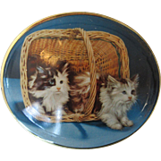 Persian Cats Trinket Tin Made in England