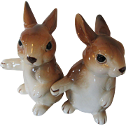 Rabbit Salt and Pepper Shakers 1979 Unieboek B.V.