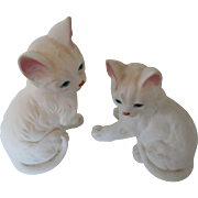 Enesco White Persian Cats Taiwan