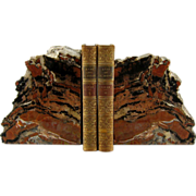 Large Pair Petrified Wood Bookends