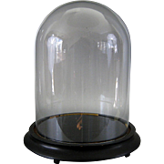 Victorian Glass Display Dome Antique Showcase