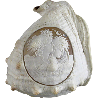 Victorian Carved Conch Shell c.1880 Day & Night Cameo Antique Carving
