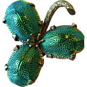 Antique Victorian Genuine Scarab Beetle Insect Pin Brooch ~ Clover Leaf Shamrock Form
