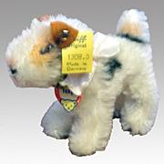 Steiff Fox Terrier - Foxy 1308.0 w/ Button & Name Tag