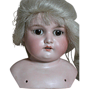 German Bisque Shoulder Doll Head A M Armand Marseille  Blonde Wig  Brwon Sleep Eyes