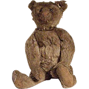 Very Early Steiff Bear With Button