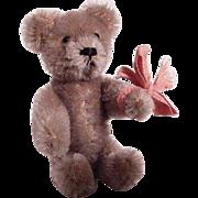 Schuco Container Bear