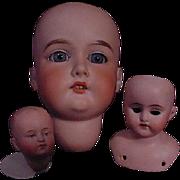 Three German Doll Heads