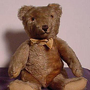 European Teddy Bear In Excellent Condition