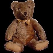 European Teddy Bear In Excellent Condition