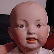Hertel Schwab Character Baby