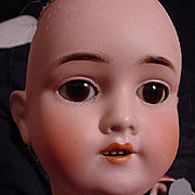 Sweet German Walkure Child Head