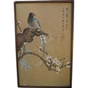Antique Chinese bird Painting signed