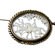 Beautiful Celluloid French Depose Brooch