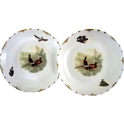 Pair of Rosenthal Pheasant Game Plates