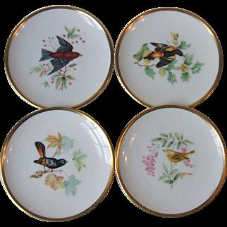 Set of 4 Hutschenreuther China Audubon Bird Coasters Germany
