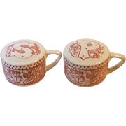 Royal China USA Memory Lane Pink Handled Salt and Pepper Shakers