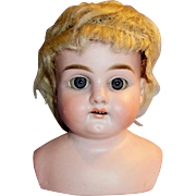 Antique 1890 Made in Germany L H B Bisque Doll Head