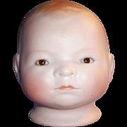 Antique Bisque Grace S Putnam Bye Lo Baby Doll Head