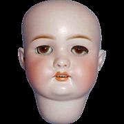 Antique German Bisque Simon Halbig C M Bergmann Doll Head