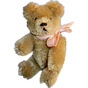Small Vintage Schuco Teddy Bear